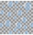 Set of Transparent Blue Soap Bubbles vector image vector image