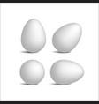set realistic white eggs vector image vector image