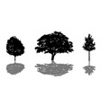 tree silhouette icon set with shadow vector image vector image