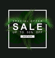 black sale banner with palm leaves jungle nature vector image