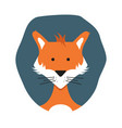 cute adult foxes in cartoon style hand-drawn fox vector image vector image