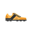 golf shoes vector image
