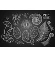 graphic prehistoric collection vector image vector image