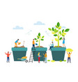 grow stages tree from seed to large plant vector image