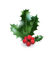 holly festive decor vector image vector image