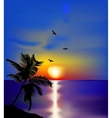 Sunset on sea with palms and birds vector image vector image
