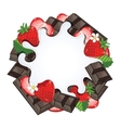 Yogurt splash isolated on chocolate and strawberry vector image vector image