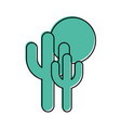 cactus plant isolated icon vector image vector image