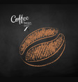 chalk drawn sketch of one coffee bean vector image vector image