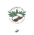 coconut leaves contrast engraving vector image