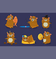 cute brown guinea pig character set funny vector image