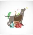 group pets - dog cat parrot chameleon rabbit vector image vector image