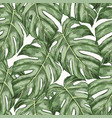 monstera leaves hand drawn seamless color pattern vector image