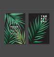 plam leaves design tropical tree jungle poster vector image