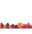 seamless border with hand drawn berries vector image
