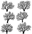 silhouettes trees without leaves vector image vector image