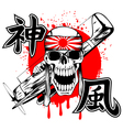 skull with band and airplane vector image vector image