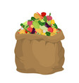vegetables burlap bag sack of veggies big crop on vector image vector image