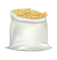 wheat bag icon realistic style vector image