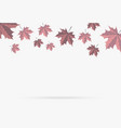 autumn pink maple leaf fall isolated on white vector image vector image