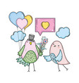 cute little birds couple with speech bubble and vector image