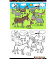 donkeys farm animal characters group color book vector image vector image