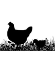 Hen an chick in the meadow vector image vector image