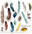 set of realistic colorful feathers vector image vector image