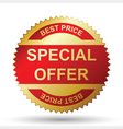 Special offer vector image