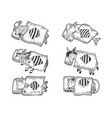 cartoon sleeping animals set sketch vector image