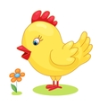 Cute hand drawn chick cock chicken yellow kids vector image vector image