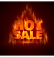 Hot Sale vector image vector image