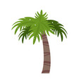 palm tree icon image vector image vector image