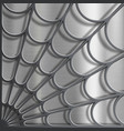spider web pattern on a metallic background vector image