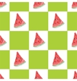 Seamless natural color pattern of watermelon vector image