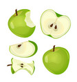 bitten apple whole half and slice isolated vector image
