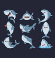 cute funny shark flat set vector image vector image
