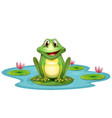 frog lake cartoon vector image vector image