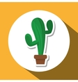 Graphic design of cactus vector image vector image