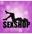logo for a sex shop vector image vector image