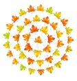Maple leaves round frame vector image vector image