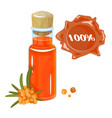 sea buckthorn oil in a glass bottle sprig and sea vector image vector image