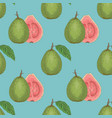 seamless pattern with ripe guava with leaf vector image vector image
