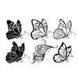 seated butterflies vector image