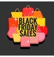 Black Friday sales vector image