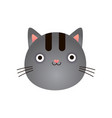 cute gray kitten face baby animal head vector image vector image