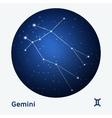 Gemini constellation vector image