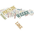 lose pounds in weeks text background word cloud vector image vector image