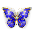Sapphire Butterfly vector image vector image
