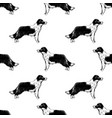 seamless pattern with border collies vector image vector image
